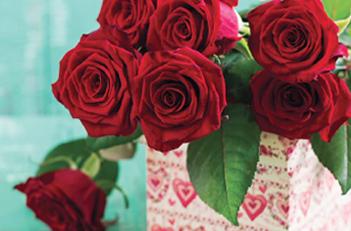 Cvet ljubavi